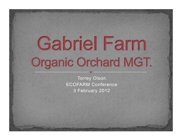 Torrey Olsen ? Gabriel Farm Presentation