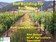 Soil Building for Resilience