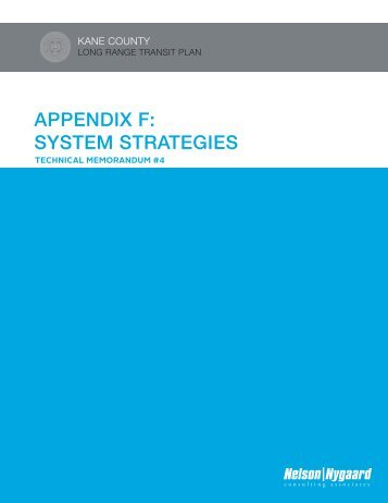 APPENDIX F: SYSTEM STRATEGIES - Kane County Department of ...