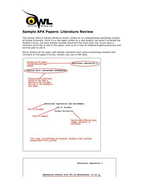 sample apa papers literature review