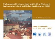 The Framework Directive on Safety and Health at Work and its ...