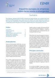 Inquérito europeu às empresas sobre riscos novos e ... - Europa