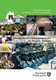 Jahresbericht der Arbeitsschutzbehörden des Freistaats ... - Europa