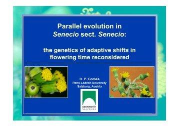 Parallel evolution in Senecio sect. Senecio: - OpenWetWare