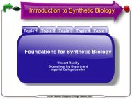 Introduction to Synthetic Biology - OpenWetWare