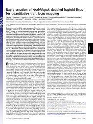 Rapid creation of Arabidopsis doubled haploid lines for quantitative ...