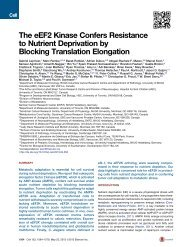 The eEF2 Kinase Confers Resistance to Nutrient ... - McGill University