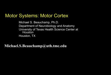 Motor Systems: Motor Cortex - OpenWetWare