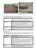 Forebyggelse af rågeskader – specielt i økologisk ... - LandbrugsInfo - Page 2