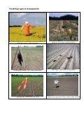 Forebyggelse af rågeskader – specielt i økologisk ... - LandbrugsInfo - Page 7