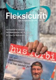 Fleksicurity nr. 17
