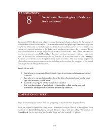 Lab 8 Vertebrate homologies:Layout 1.qxd