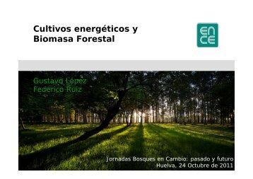 Cultivos energéticos y Biomasa Forestal - Universidad de Huelva