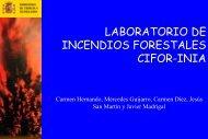 LABORATORIO DE INCENDIOS FORESTALES CIFOR-INIA