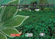 Recomendaciones Para el Manejo de Moscas Blancas en Yuca - cgiar