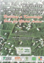 Whitefly and whitefly-borne viruses in the tropics : Building a ... - cgiar