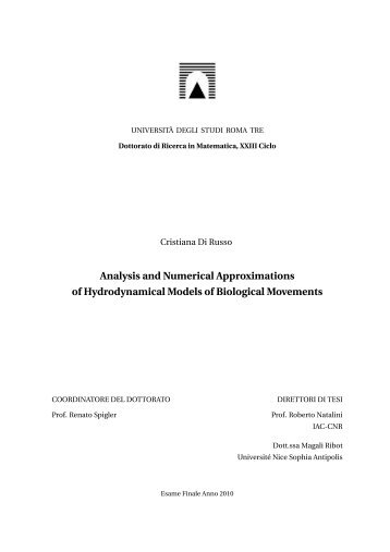 Analysis and Numerical Approximations of Hydrodynamical Models ...