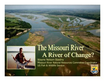 Wayne Nelson-Stastny - American Water Resources Association