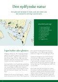 Find og oplev Øhavets natur - Det Sydfynske Øhav - Page 4