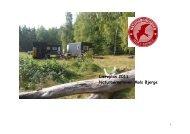 Læreplan 2011 Naturbørnehaven Mols Bjerge