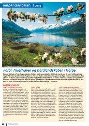 Forår, frugthaver og fjordlandskaber i Norge - NILLES REJSER A/S