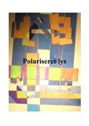 Polariseret lys