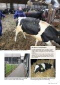 Håndtering af store dyr - BAR - jord til bord. - Page 3
