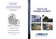 FAKTA OM SKIMMELSVAMPE - El- og VVS/BST
