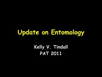 Bt and Insect Update for Cotton- Kelly Tindall, MU Delta Center