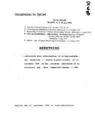 Første slutspil: Merlungsberetning: Sindssygdom 1994 - Gaderummet