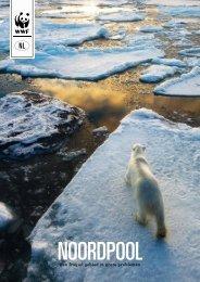 Een fragiel gebied in grote problemen - Wereld Natuur Fonds