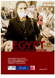 Egypt Under Repression - Danish Institute for Parties and Democracy