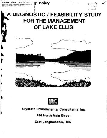 a diagnostic_feasibility study for the management of lake ellis