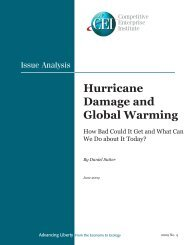 Hurricane Damage and Global Warming - Competitive Enterprise ...