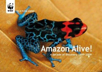 Amazon Alive!