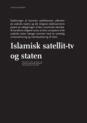 Islamisk satellit-tv og staten - Babylon