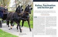 Kultur, Faszination und action pur - Mecklenburger Pferde