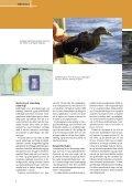 En unik måde at følge arktiske fugles trækruter på - Elbo - Page 3