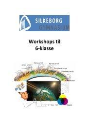Workshops til 6-klasse - Silkeborg Gymnasium