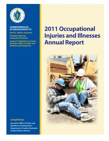 Massachusetts Occupational Injuries and Illnesses Report 2011