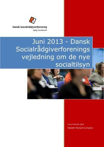 document V Vejledning Om SSR PDF