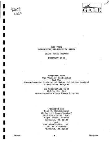 box pond diagnostic_feasibility study draft final report february 1990
