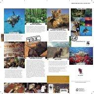 WNF07048-01 folder Algemeen.indd - Wereld Natuur Fonds