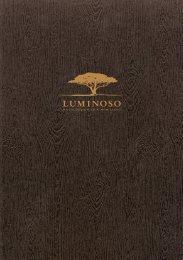 LUMINOSO Brochure