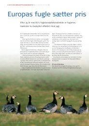Læs side 24-29 i MiljøDanmark nr. 2, 2004