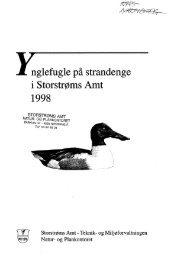 nglefugle på strandenge i Storstrøms Amt 1998 - DOF Storstrøm