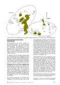 Bygherrerapport - Folkemuseet - Page 7