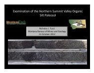 Examination of the Northern Summit Valley Organic Silt Paleosol