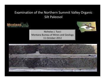 Examination of the Northern Summit Valley Organic Silt Paleosol