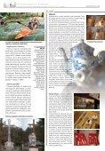 Drzewica - Gazeta.pl - Page 6